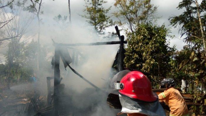 Lupa Sedang Masak Air, Rumah Singgah di Balik Bukit Lampung Barat Dilalap Api