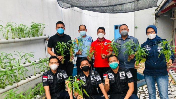 Napi Rutan Kota Agung Lampung Panen Kangkung Hidroponik dan Lele