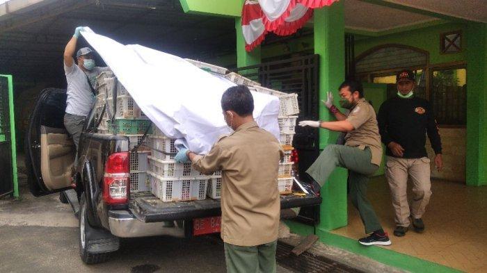 BREAKING NEWS - BKSDA Bengkulu-Lampung Gagalkan Penyeludupan Ribuan Burung Ilegal