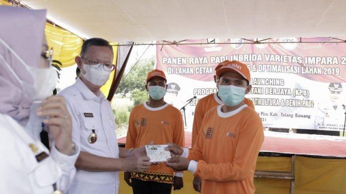 Sekprov Fahrizal Sebut Produksi Padi Tuba Cukup Baik, Mampu Topang Ekonomi Lampung Selama Pandemi