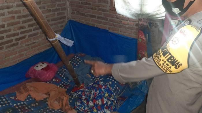 Siswi SMA di Pesawaran Lampung Ditemukan Tewas dengan Dasi Melilit Leher