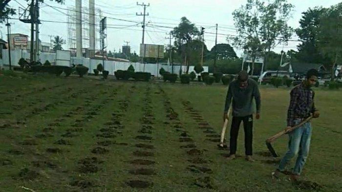 Tanah Terminal Menggala Ditanami Singkong, Pemkab Tulangbawang Tunggu Action Polres Tuba