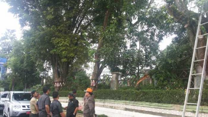 Pohon Tutupi Lampu Penerangan di Jl Ryacudu Bandar Lampung