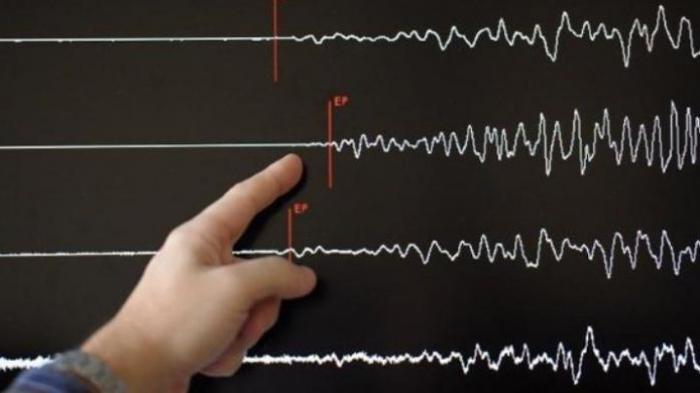 Tidak Semua Masyarakat Tanggamus Rasakan 3 Kali Gempa Sejak Minggu Petang