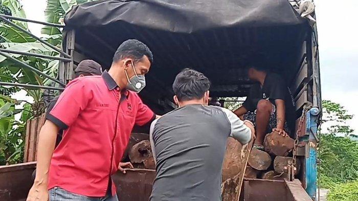 Diupah Rp 6 Juta, 2 Sopir Truk Bawa Kayu Sonokeling Hasil Illegal Logging Diamankan di Tanggamus