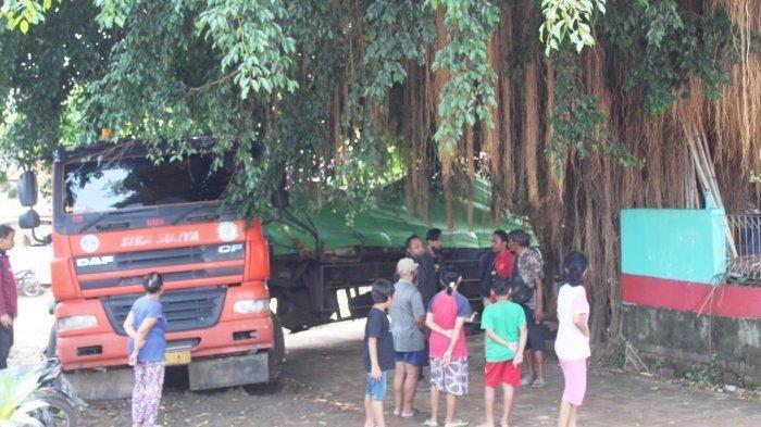 Video Truk Trailer Kesasar di Semarang, Terjebak di Pohon Beringin Bikin Heboh Warga