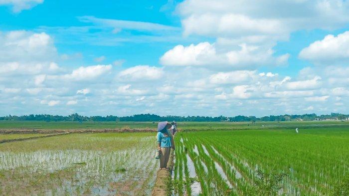 Achyani UM Metro Ungkap Sektor Pertanian Berhubungan dengan Ekonomi dan Politik
