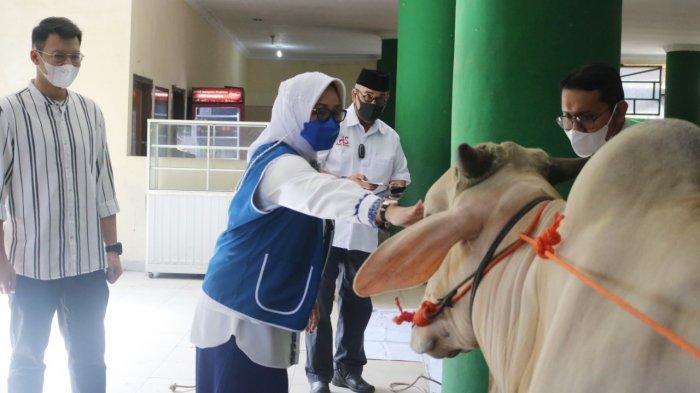 Peduli Masyarakat, UMITRA dan IWAPI Lampung Berbagi Daging Qurban
