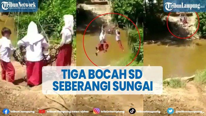 Viral Tiga Bocah SD Bergelantungan di Keranjang Rotan Seberangi Sungai
