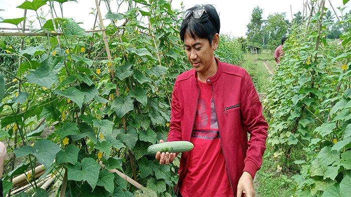Wakil Ketua DPRD Lamteng Manfaatkan Kotoran Hewan untuk Pupuk Kebun