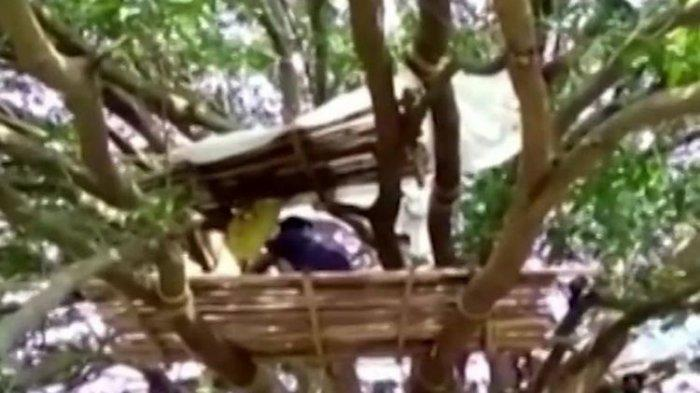 Warga Desa India Isolasi Diri di Atas Pohon Tangkal Corona