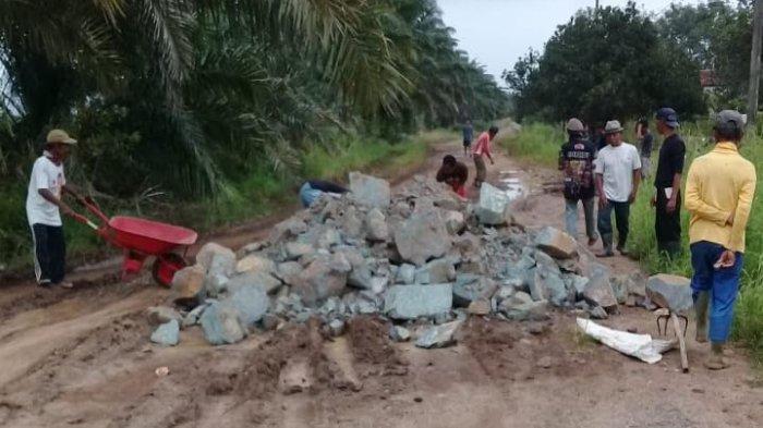 Warga Wonomarto Lampung Utara Perbaiki Jalan Kabupaten