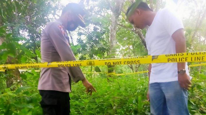 Polisi menunjukkan lokasi penemuan benda diduga granat di kebun karet di Way Kanan, Jumat (4/12/2020). Angggota dari Jihandak Satbrimob Polda Lampung langsung melakukan evakuasi dan pemusnahan benda diduga granat itu di bangunan tua dekat lokasi penemuan pada Sabtu (5/12/2020). (Dokumentasi Polisi)