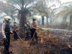50-personel-gabungan-padamkan-lahan-sawit-10-hektare-yang-terbakar-di-mesuji.jpg