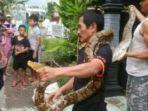 agus-memperlihatkan-ular-sanca-kembang_20170114_114558.jpg