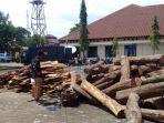 barang-bukti-kayu-sonokeling-di-mapolres-lampura_20180122_164817.jpg