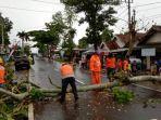 bpbd-metro-turunkan-14-personel-dan-3-gergaji-mesin-evakuasi-pohon-tumbang.jpg