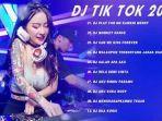download-lagu-dj-tiktok-mp3-tahun-2020-video-populer-gudang-lagu-dj-remix-buat-dugem.jpg