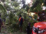 evakuasi-pohon-tumbang-bpbd-kota-metro-terjunkan-10-personel.jpg