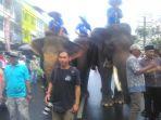 gajah-mustafa_20180108_110932.jpg