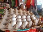 harga-telur-ayam-ras-kini-rp-25000-per-kg.jpg
