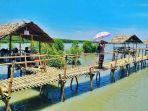hutan-mangrove-lamtim_20180808_132825.jpg