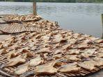 kuliner-lampung-olahan-ikan-asin-gabus-keriting-tamrin-jadi-oleh-oleh-khas-sungai-badak-mesuji.jpg