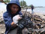 limbah-diduga-aspal-penuhi-bibir-pantai-sebalang-lampung-selatan.jpg