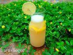 manfaat-minum-air-hangat-dengan-perasan-lemon-saat-bangun-tidur-pagi-hari.jpg