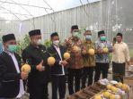 panen-melon.jpg