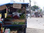 pedagang-buah-di-jalur-lintas-sumatera.jpg