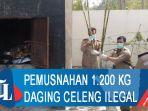 pemusnahan-1200-kg-daging-celeng-ilegal-asal-spanyol.jpg