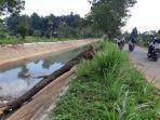 sampah-menumpuk-akibat-pohon-tumbang-di-saluran-irigasi-tejosari.jpg