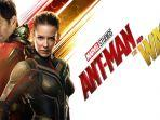 streaming-film-ant-man-and-the-wasp-sub-indo-film-paul-rudd-dan-evangeline-lilly.jpg