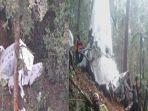 tiga-awak-pesawat-rimbun-air-ditemukan-meninggal-butuh-7-jam-jalan-kaki-ke-lokasi.jpg