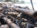 walhi-desak-kepolisian-turut-usut-tuntas-pencemaran-limbah-di-bibir-pantai-lampung.jpg