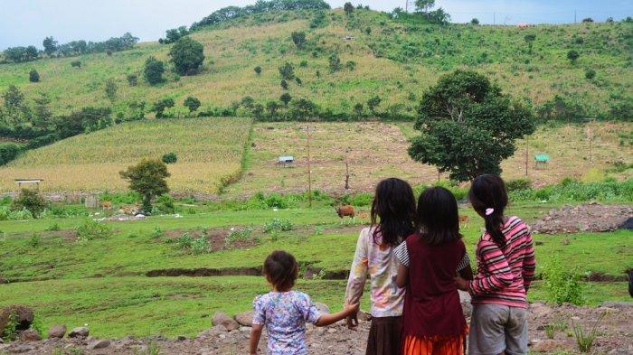 Hutan Gundul Penyebab Banjir Bima-Dompu, Ini Kata Kepala BNPB