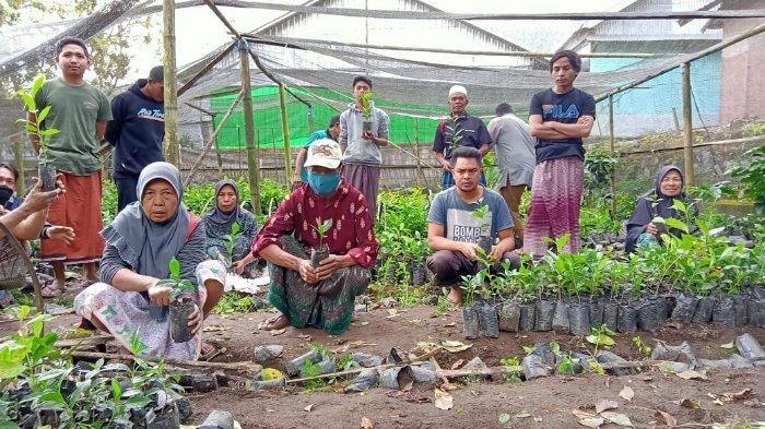 45 Ribu Bibit Kopi dan Upaya Menjaga Kelestarian Alam di Kaki Rinjani