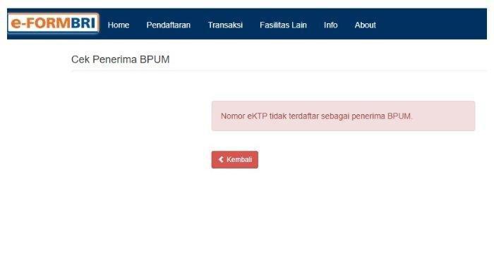 Cek Nama Penerima BLT UMKM Cek di eform.bri.co.id/bpum, Ini Panduan Pencairan Uang Rp 2,4 Juta
