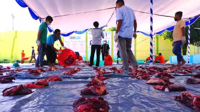 PLN Sumbang 2.977 Hewan Kurban, 64 Ekor Diberikan untuk Warga NTB