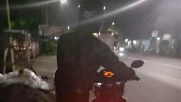 Motor Cewek Dibawa Kabur Pacar saat Kencan Berboncengan Keliling Kota, Awal Kenalan di Michat