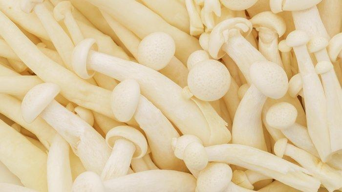 Jamur Enoki Mengandung Bakteri Listeria, Kenali Gejala Terinfeksi Listeriosis: Mual hingga Demam