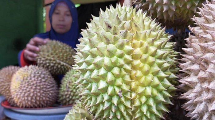 Serunya Berburu Buah Durian di Lombok, Ini Beberapa Tempat yang Bisa Didatangi