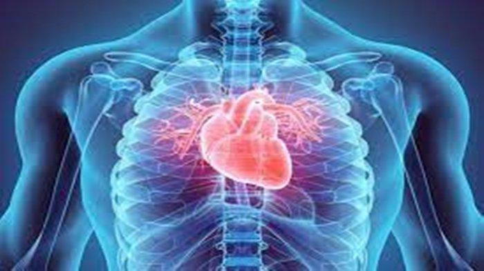 Apa Itu Penyakit Jantung? Ini Jenis, Gejala, Penyebab, serta Risikonya