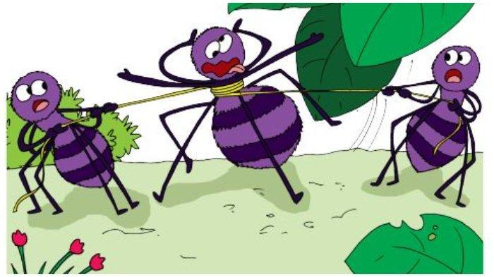 Kunci Jawaban Tema 3, Kelas 6 SD, Halaman 156 dan 157, Aku Cinta Membaca: Laba-laba Buncit