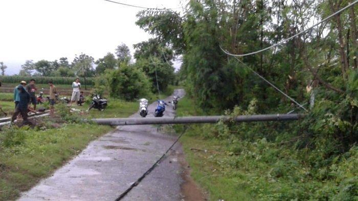 Angin Kencang Robohkan Sejumlah Tiang Listrik PLN di Lombok, Perbaikan Masih Dilakukan