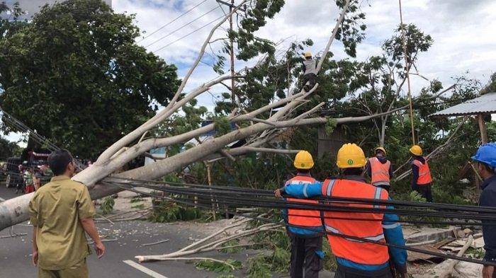 WASPADA Angin Kencang dan Gelombang Tinggi di NTB 3 Hari ke Depan