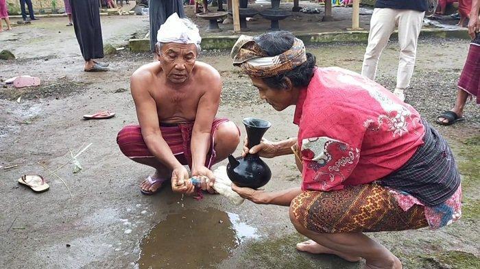 DIBERSIHKAN: Sebelum disembelih ayam dibersihkan untuk memuliakannya, dalam ritual ngasuh gunung, di Desa Senaru, Lombok Utara, Senin (22/2/2021).