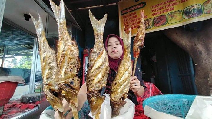 Wisata Murah di Lombok, Santap Ikan Bakar Besar Rp 10 Ribuan di Pinggir Pantai Mataram