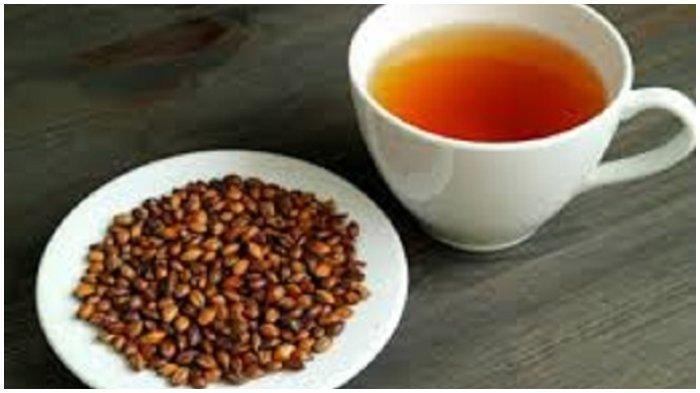 5 Manfaat Teh Barley untuk Kesehatan Lengkap dengan Cara Membuatnya, Bisa Meningkatkan Kekebalan